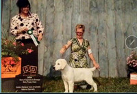 Best Puppy In Show at the 2014 Canadian National